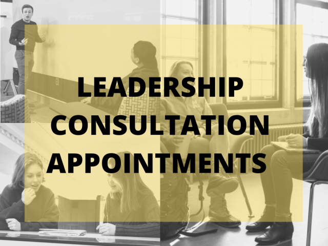 leadership consultation appointments