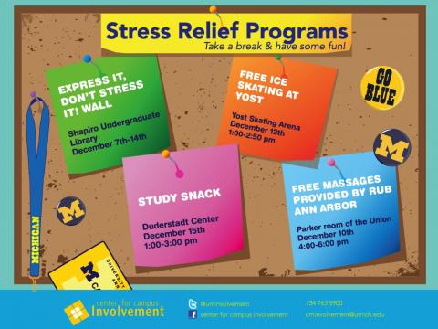 stress relief program