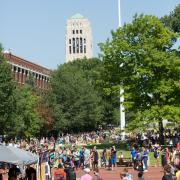 The Diag during Festifall